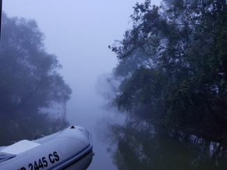 Bashi Creek 6 am