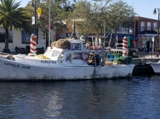 Little Joe sponge boat